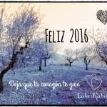 FELICES FIESTAS Y FELIZ AÑO NUEVO 2016!